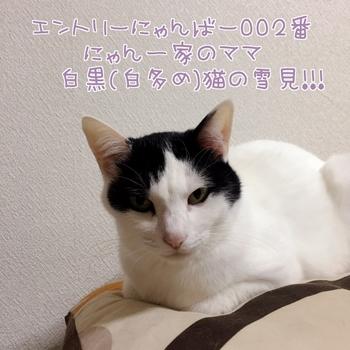 20151113175940-978710.JPG