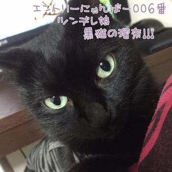 20160111144002-1042763.JPG
