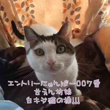 20160202132143-959911.JPG