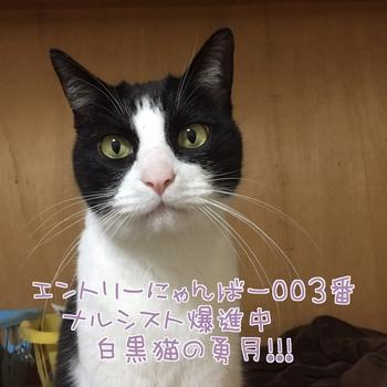 20160204194542-999810.JPG