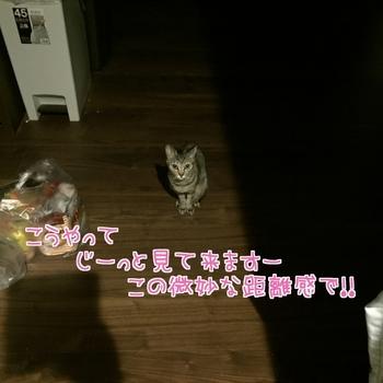 20170125013018-1369746.JPG