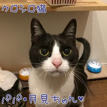 20170222201548-1593001.JPG